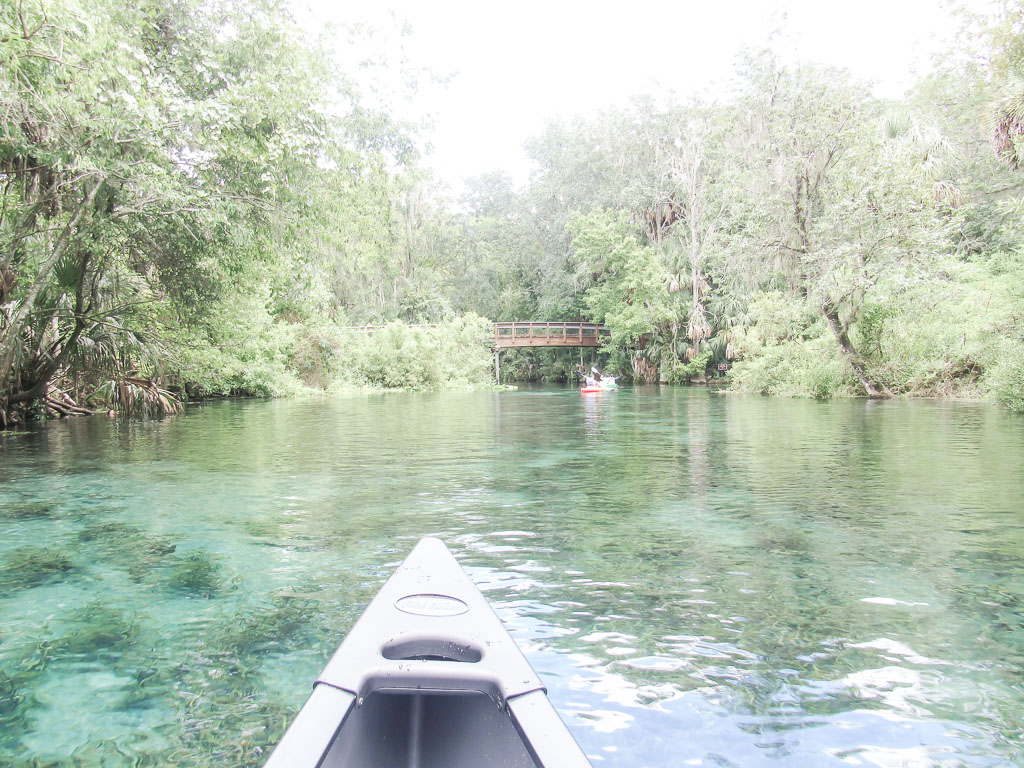 Canoeing at Silver Springs State Park
